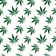 Cannabis-Textur