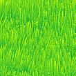 frisches Gras, Textur