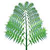 grüner Busch