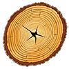 Векторный клипарт: срез дерева
