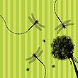 ID 3002416 | Dandelion i ważka | Stockowa ilustracja wysokiej rozdzielczości | KLIPARTO