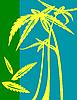 ID 3025371 | Palmen | Illustration mit hoher Auflösung | CLIPARTO