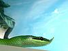 ID 3011033 | Schlange mit Рorn | Foto mit hoher Auflösung | CLIPARTO