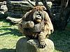 ID 3011041 | Wściekły orangutan | Foto stockowe wysokiej rozdzielczości | KLIPARTO