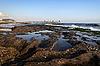 Staw od brzegu | Stock Foto