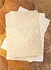 ID 3014739 | Retro Hintergrund mit Herbarium und altes Foto | Foto mit hoher Auflösung | CLIPARTO
