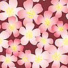 Hintergrund mit Kirsch-Blumen