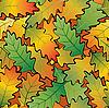 Eiche-Herbstblätter  | Stock Vektrografik
