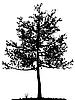 树剪影 | 向量插图