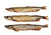 ID 3032657 | Trzy złote ryby wędzone | Foto stockowe wysokiej rozdzielczości | KLIPARTO