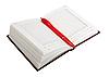 ID 3032720 | Pusty otwarty dziennik i czerwony długopis | Foto stockowe wysokiej rozdzielczości | KLIPARTO