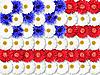 ID 3032946 | Tło z kwiatów jako flaga USA | Foto stockowe wysokiej rozdzielczości | KLIPARTO