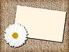 ID 3033036 | Weiße Blume und leere Visitenkarte | Foto mit hoher Auflösung | CLIPARTO