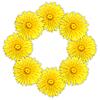 ID 3033158 | Rahmen als Ring aus gelben Blumen | Foto mit hoher Auflösung | CLIPARTO