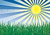 草,太阳和天空 | 向量插图