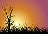 Baum-Silhouette deim Sonnenuntergang