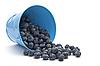 ID 3013199 | Heidelbeeren in einem Eimer | Foto mit hoher Auflösung | CLIPARTO