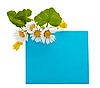 ID 3013812 | Blaues Panel für Text mit Blumen | Foto mit hoher Auflösung | CLIPARTO