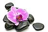 ID 3014011 | Rosa Orchidee und Zen-Steine | Foto mit hoher Auflösung | CLIPARTO
