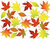 Осенний фон из листьев