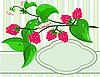Zweig von Himbeere