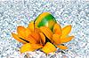 Pisanka z kwiatami na lodzie | Stock Foto