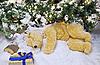 Plüsch-Eisbär schläft unter dem Weihnachtsbaum | Stock Photo