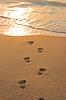 ID 3015424 | Ślady na piasku plaży i fal | Foto stockowe wysokiej rozdzielczości | KLIPARTO