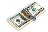 ID 3015585 | Geld Sicherheitskonzept | Foto mit hoher Auflösung | CLIPARTO