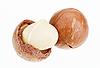 ID 3016853 | Łuskane i niełuskane orzechy makadamia na białym tle | Foto stockowe wysokiej rozdzielczości | KLIPARTO