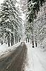 ID 3016913 | Zimowa droga w las pokryty śniegiem | Foto stockowe wysokiej rozdzielczości | KLIPARTO