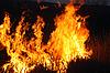 ID 3017499 | Potężny płomień ognia | Foto stockowe wysokiej rozdzielczości | KLIPARTO