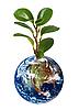 ID 3018793 | Planet Erde mit Pflanze | Foto mit hoher Auflösung | CLIPARTO