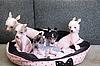 ID 3021190 | Щенки китайской хохлатой собаки | Фото большого размера | CLIPARTO