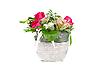 ID 3029990 | Hochzeit-Strauß mit Rosen | Foto mit hoher Auflösung | CLIPARTO