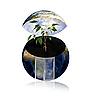 ID 3030544 | Земной шар как экологичный дом | Фото большого размера | CLIPARTO