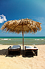 帆布椅子上的热带海滩 | 免版税照片