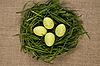 ID 3020501 | Gras-Nest mit Eiern | Foto mit hoher Auflösung | CLIPARTO