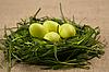 Gras-Nest mit Eiern | Stock Foto