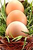 ID 3023272 | 잔디 바구니에 세 부활절 달걀 | 높은 해상도 사진 | CLIPARTO