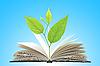 Buch und Pflanze | Stock Foto