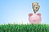 Sparschwein mit Dollars auf grünem Gras | Stock Foto
