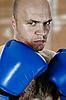 ID 3022168 | Boxer | Foto mit hoher Auflösung | CLIPARTO