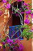 Balcony in the flowers of bougainvillea | Stock Foto