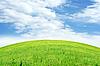 ID 3025870 | Летний ландшафт с лугом и небом | Фото большого размера | CLIPARTO