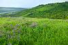 Piękny krajobraz wsi | Stock Foto