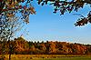 ID 3066703 | Las w kolorach jesieni | Foto stockowe wysokiej rozdzielczości | KLIPARTO