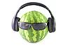 ID 3057283 | Wassermelone in Kopfhörer und Brille | Foto mit hoher Auflösung | CLIPARTO