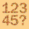 12345 kolorowe numery z jesiennych liści | Stock Vector Graphics
