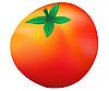 成熟的西红柿 | 向量插图